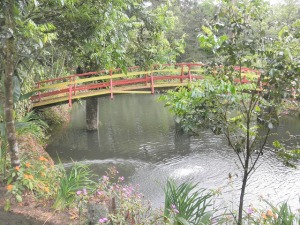 """Japanese"" bridge in forest"